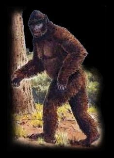 an overview of the bigfoot in the american mythology If you don't believe in bigfoot (singular or plural), you're not alone according to a  2007 baylor religion survey, only 16 percent of americans.